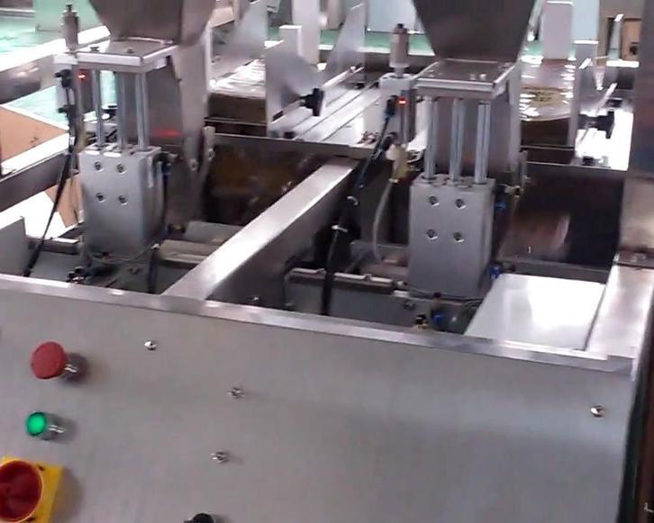 双工位给袋式颗粒包装机